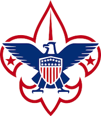 Boy Scouts faces bankruptcy as costs of sex abuse settlements stack up