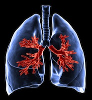concerns linger over mesothelioma risks and asbestos